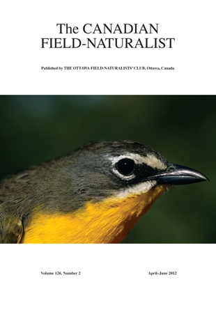 Cover photo - Western Yellow-breasted Chat (Icteria virens auricollis)