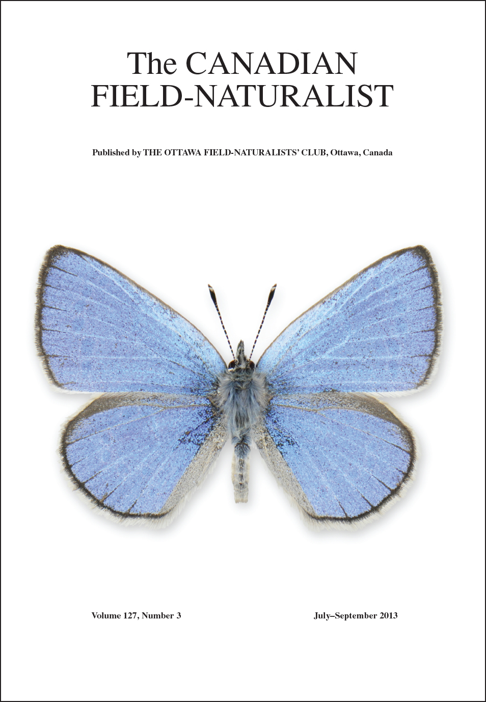 Cover photo (butterfly) vol 127 issue 3, The Canadian Field-Naturalist
